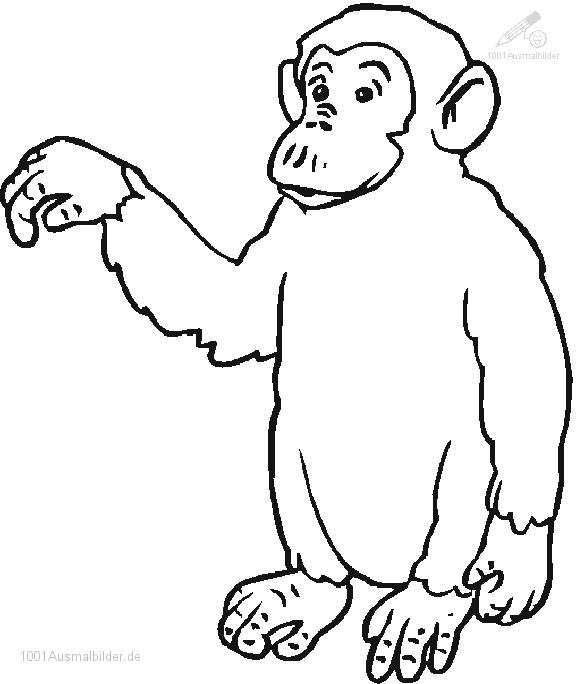 Ausmalbild Affe