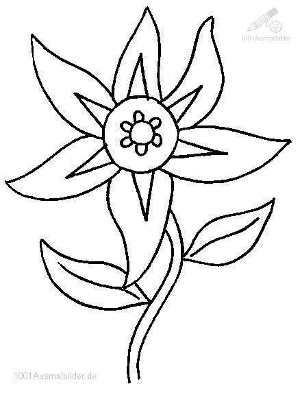 Galerry flower picture for coloring