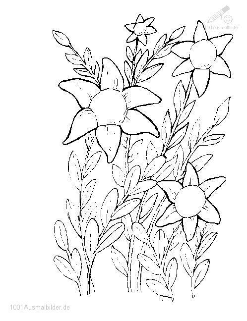 Blumen Ausmalbild
