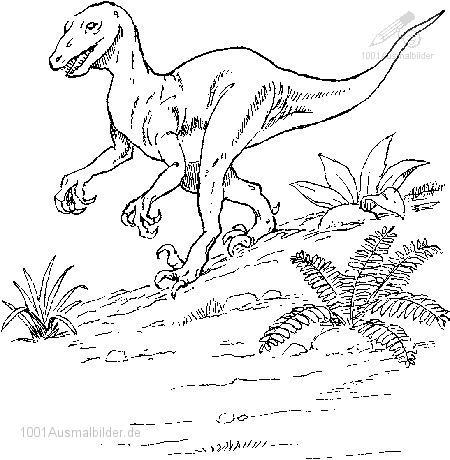 Dinosaurier Ausmalbild