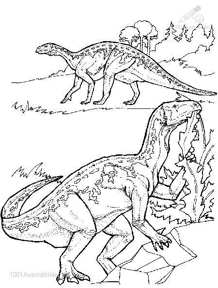 Ausmalbild: ausmalbild-dinosaurier-13