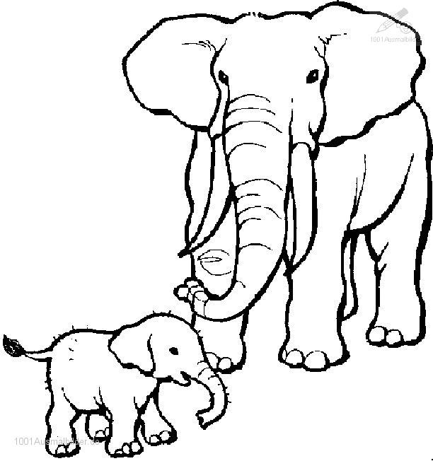Ausmalbild Elefant. ausmalbild. ausmalbild zum drucken elefant im ...