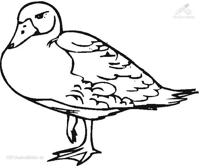 Ausmalbild Ente