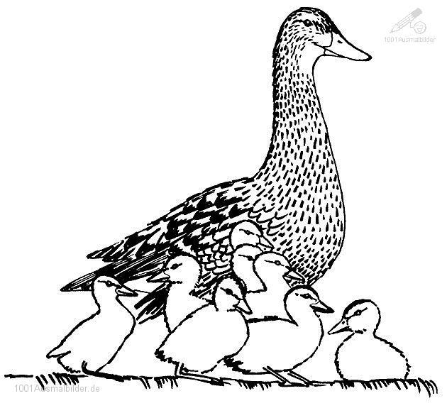Ente Mutter
