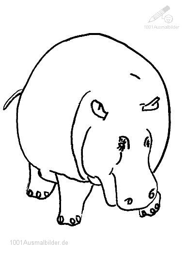 Ausmalbild: ausmalbild-flusspferd-15
