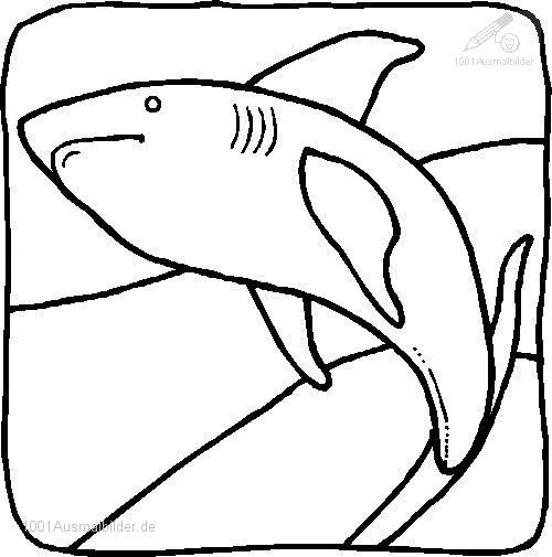 Haie Ausmalbild