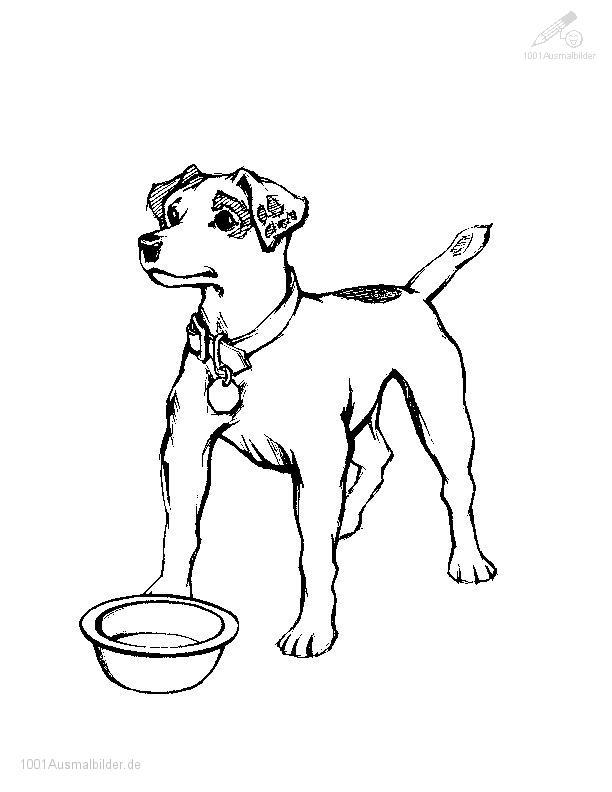 Hund Bilder Zum Ausmalen