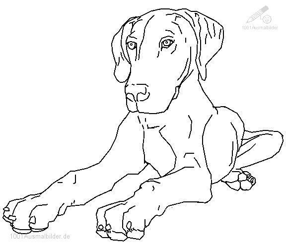 Ausmalbild Ausmalbild Hund 13