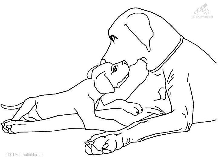 Ausmalbild Hund