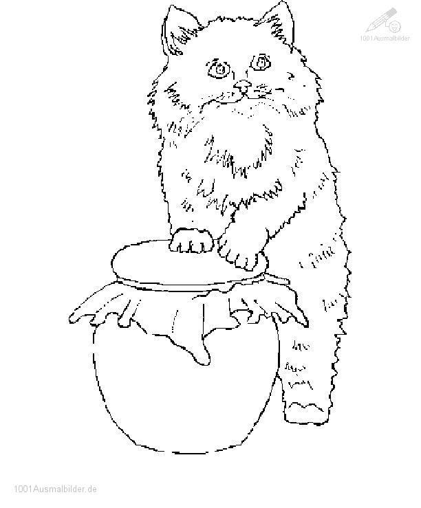 Ausmalbild Kitten