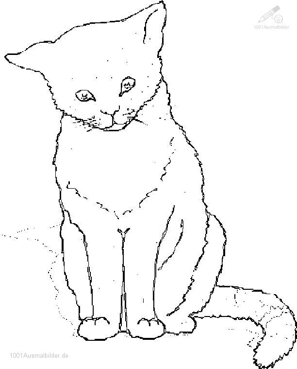 Ausmalbild Katze