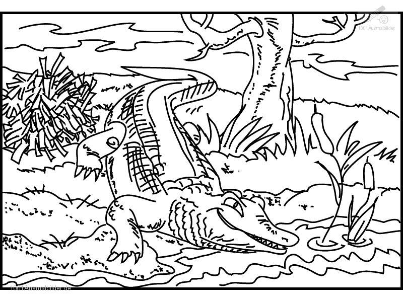 Krokodil Ausmalbild