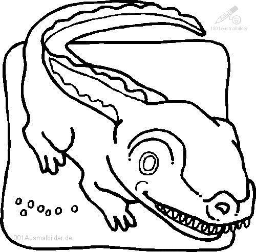 Ausmalbild: ausmalbild-krokodil-8