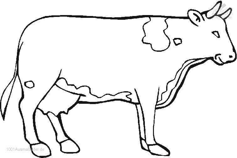 Kuh Zum Ausmalen Newtemp