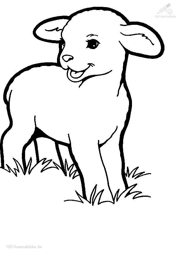 Ausmalbild Kleines Lamm