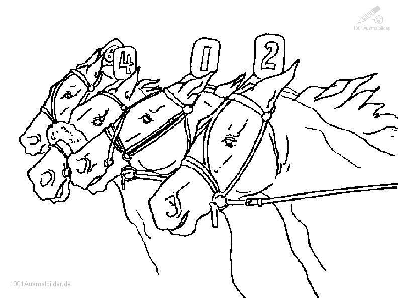 Ausmalbild: ausmalbild-pferd-16