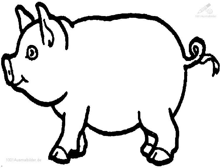 Ausmalbild: ausmalbild-schwein-2