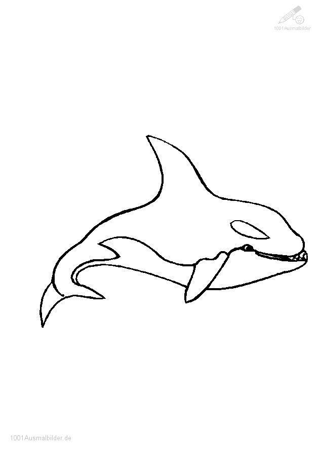 Ausmalbild Wal