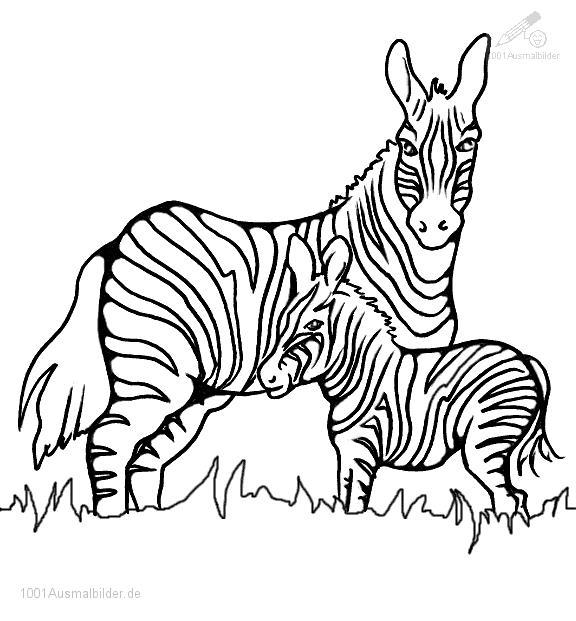 Ausmalbild Zebra Mutter mit Jung