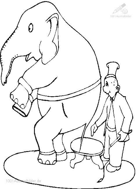 Ausmalbild Zirkus Elefant