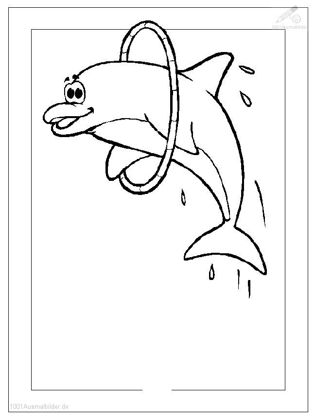 Delphin Ausmalbild