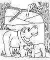 Ausmalbild Flusspferd >> Ausmalbild Flusspferd